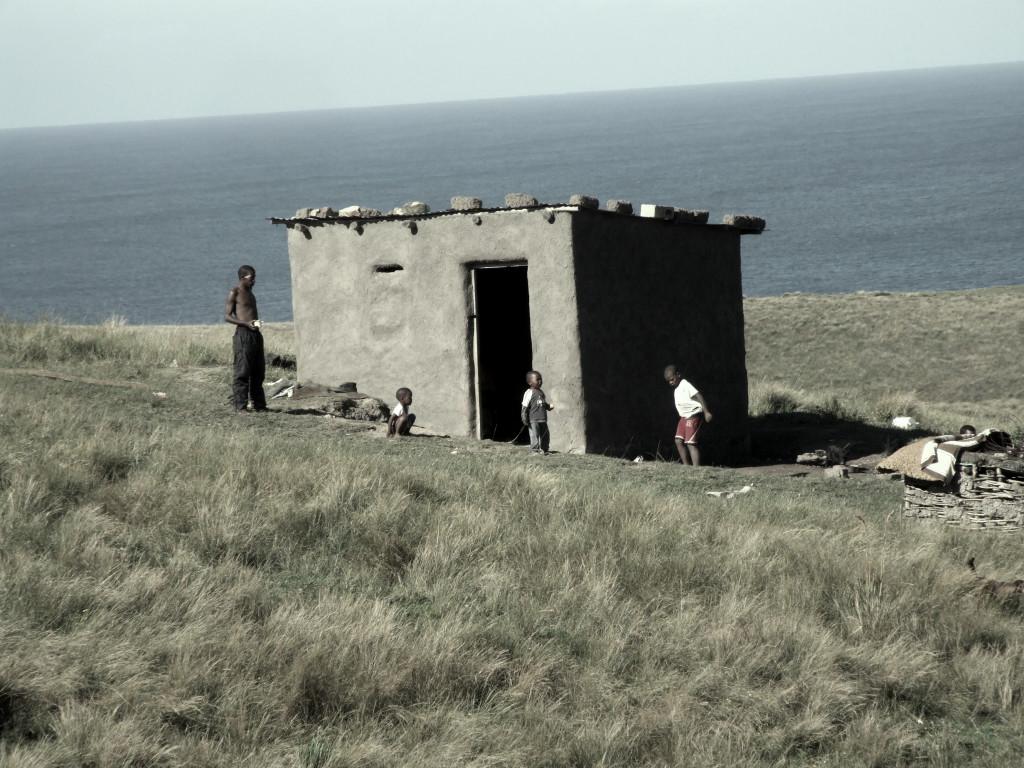 Transkei Locals