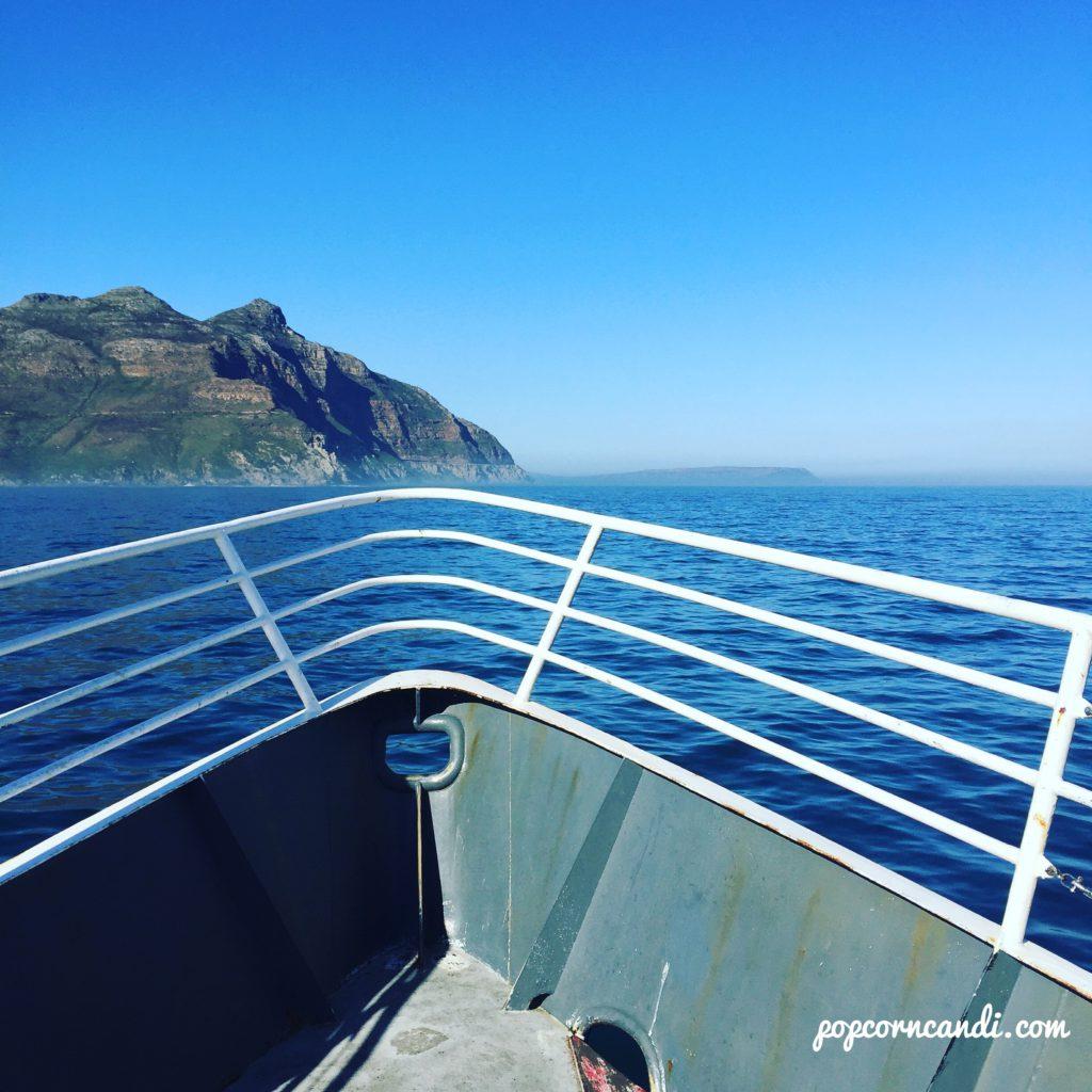 Seal Island Cruise